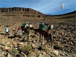 Camel Desert Trek - Day 1: up toward the Col Oum Laachar Pass in the Jbel Bani Mountains