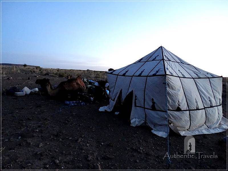Camel Desert Trek - Day 1: Near the Tighrghrin Oasis - our camp for the first night (the kitchen-tent)