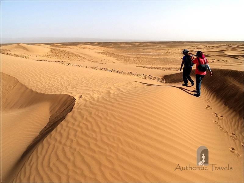 Camel Desert Trek - Day 4: walking toward Ouad Naeme