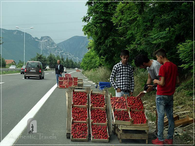 On the way to Mavrovo - buying strawberries on the 'highway'