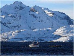 Nordkjosbotn fjords, Northern Norway