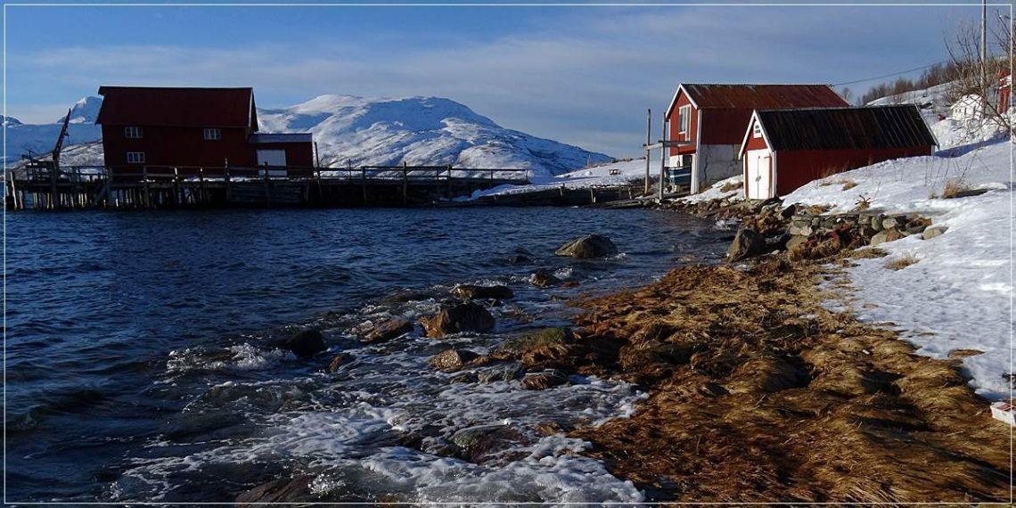 Norwegian Fjords (crop)